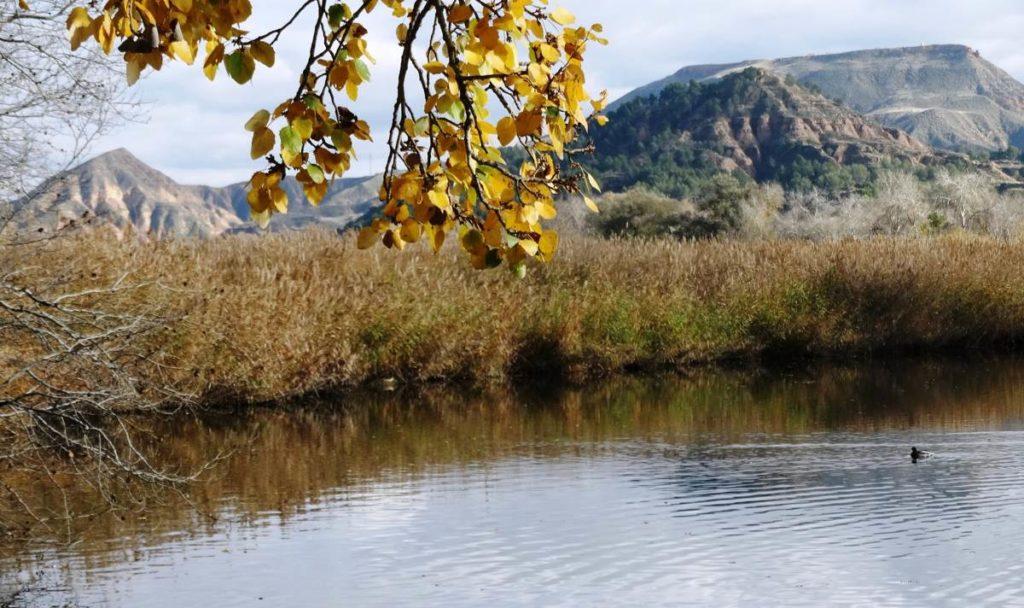 rio henares1